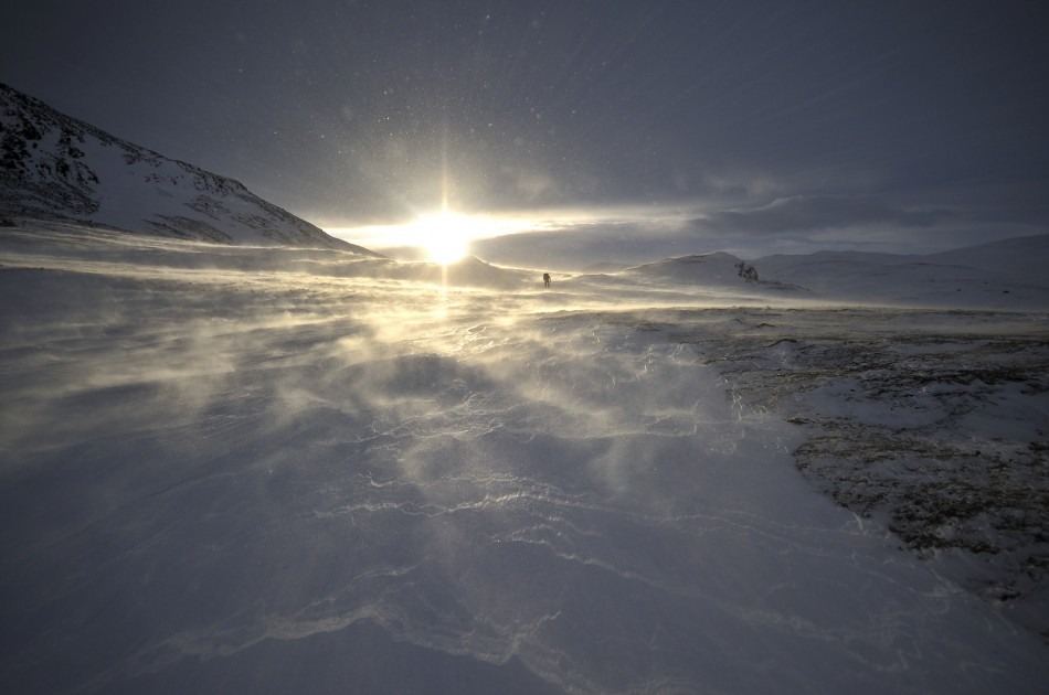 Windy-day-on-Dovre-mountain-III