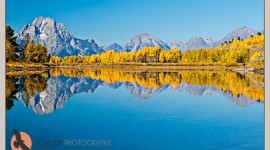 Photographing Ox Bow Bend in autumn