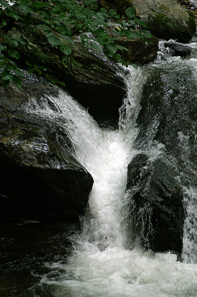 Smith Creek Below Anna Ruby Falls