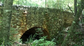 Torreya Park Stone Bridge