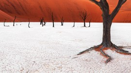 DeadVlei Red Dunes | Landscape Photographer Africa